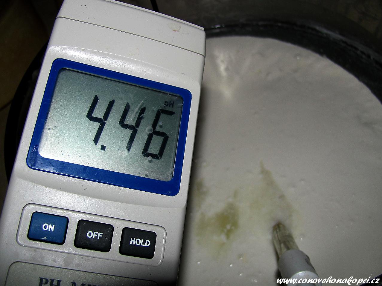 kozí sýr pH před formováním