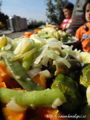 hokajdo-se-zeleninou
