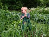 Zahradníček